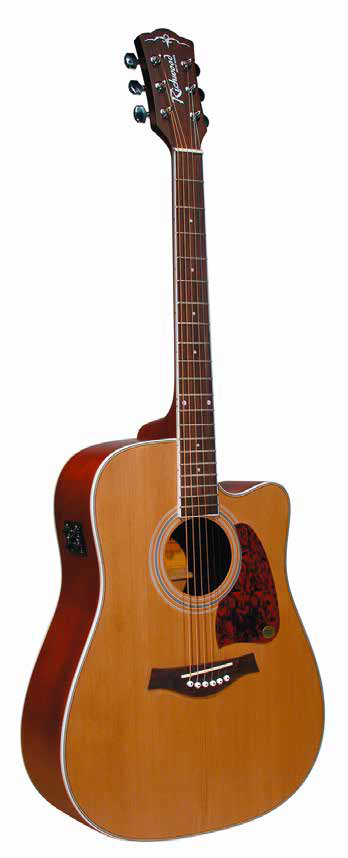 RICHWOOD - RD-17-CE - DREADNOUGHT